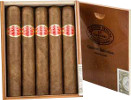 Curivari Seleccion Privada Coronations, Corona